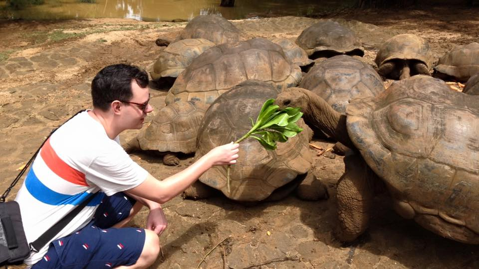 la-vanille-mauritius-skildpadde